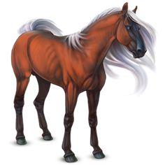 Мфу-Маджи, верховая лошадь Анг - Лоwади