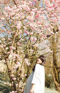 The Cherry Blossom Girl - Bump 01