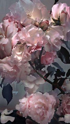 Flowers #FANTASTIC**