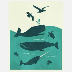 graphic designers, graphic prints, art prints, kid rooms, poster, sea, whale, birds, frida clement