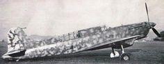 Caproni Ca.335
