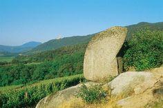 Sentier des Roches à Dieffenthal en Alsace (67650 Dieffenthal) - fr   Selestat Tourisme Haut-Koenigsbourg