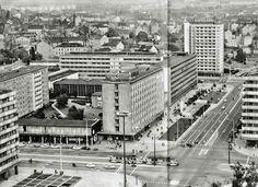 StraNa, 1974