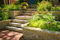 """Stone terraced wall with steps.  Excellent idea to """"rework"""" the raised beds on the side of the hill."""