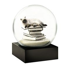 although snow globes started out fairly simple they have evolved into enchanting and often times hypnotic works of art. For this reason they have found a special place in my heart and home. With this in mind I wanted to share some of my favorite cool snow globes. Also found under buy snow globes online, snow globe store, amazon snow globes, cool snow globes, cheap snow globes  Cat on Books White Snow Globe