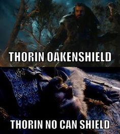 Uhh lol XD<-- yes, it's funny, but it's also full of FEELS, Thorin No-Can-Sheild, seriously, I was almost in tears during that scene, thinking Thorin was dead.
