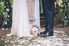 Photography: Briana Morrison - brianamorrison.com  Read More: http://www.stylemepretty.com/2015/04/24/romantic-forest-grove-wedding/