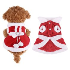 dog christmas dress - Google Search Christmas Dog, Teddy Bear, Dogs, Cute, Animals, Animaux, Doggies, Kawaii, Animal