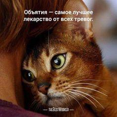 15:00 Нежность  (фото — instagram.com/perfektnice) #нежность, #любовь, #поддержка, #двое, #tbworker