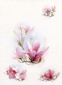 Magnolie - akwarelka do naszych zaproszeń.
