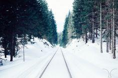 Snowy tracks ❄️. #nature #views #snow #fashionformen #narwood #fashion #watches #sustainablefashion