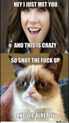 funny quotes - Hilarious And Sarcastic Grumpy Cat Memes Lively Pals Grumpy Cat Quotes, Funny Grumpy Cat Memes, Funny Animal Memes, Cute Funny Animals, Funny Cats, Funny Memes, Funny Sarcastic, Funny Quotes, Sarcastic Quotes