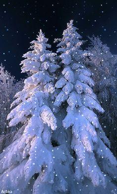 И сияет, и светится нежно  Всеми красками выпавший снег...  И чарует зима нас безбрежной  И безмолвной красою навек.. I Love Snow, I Love Winter, Winter Day, Winter Snow, Winter Holidays, Christmas Mood, Christmas Scenes, Blue Christmas, Merry Christmas