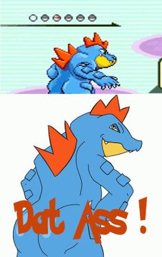 Feraligatr and DAT ASS! :P Hahahah ~PinDIv@~