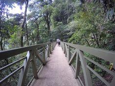 #jungle#falls#arenal