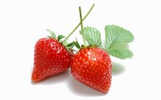 Fruit Photography : Strawberry Photos, Fresh Strawberries, Garden Strawberries