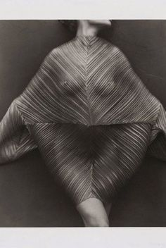 Issey Miyake Pleated Dress by Herb Ritz