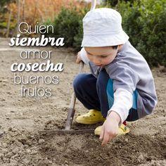 #FraseDelDíaTerraPyJ Quien siembra amor cosecha buenos frutos.