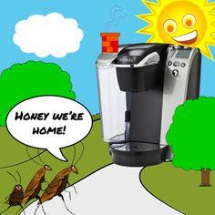 becc9d91df5156fcf71325cb776ba449  roach killer boric acid Ants In My Coffee Maker