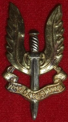 INSIGNES Indian Army Special Forces, Special Forces Gear, Shiva Wallpaper, Boys Wallpaper, Badges, Beret Rouge, Army Photography, Indian Army Wallpapers, Special Air Service