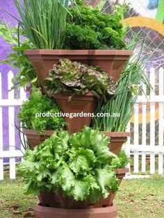Stackable planters make it super easy to grow an entire kitchen garden in a small space. http://easyurbangardens.com/easiest-way-to-create-an-edible-kitchen-garden/