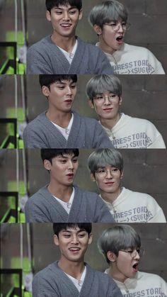 Seventeen Album, Dino Seventeen, Seventeen Memes, Mingyu Seventeen, Mingyu Wonwoo, Seungkwan, Woozi, All About Kpop, Seventeen Wallpapers
