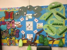 Butterfly Life Cycle Bulletin Board   , Life Cycling, Life Cycles, Butterflies Bulletin Boards, Butterflies ...