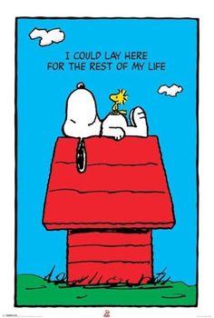 Snoopy http://media-cache2.pinterest.com/upload/69454019223300354_cAZ8MqxG_f.jpg barbarabrandt inspiring