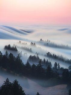 Image credit: @nickfjord  #fog rolling #Mt.Tamalpais #travel #destination #vacation #photo Destinations, Dark Places, Geocaching, National Photography, Image Editing, Milky Way, Landscape Photographers, Nature Photos, Nature Images