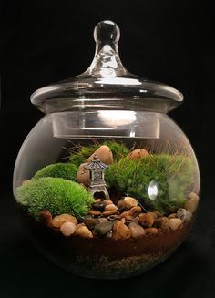 A personal favorite from my Etsy shop https://www.etsy.com/listing/542598874/pagoda-terrarium-japanese-garden