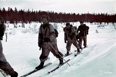 650 - Hiihto-osasto matkalla. Ski patrol on the move.Petsamo, Kukkesjaur…