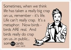 Sometimes, when we think life has taken a really big crap on us, remember - it's life. Life can't really crap. It's a metaphor. Now birds - birds ARE real. And birds really do crap on us...in public...
