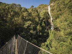 Spirit of Tasmania : On The Road, Page 1 High Falls, Giant Tree, Montezuma, Wildlife Park, Holiday Accommodation, Bird Species, Tasmania, Cool Places To Visit, West Coast