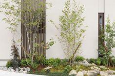 働く女性の悩みを解決! 生の声を取り入れた理想の家 コーワの家写真集 注文住宅 石川県金沢市 Muji Home, Plants, House, Stairs, Muji House, Home, Haus, Flora, Plant