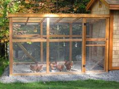 I think I found the right look for the chicken run for out chicken coop!