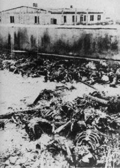 Murdered and burned in Vernichtungslager Majdanek.