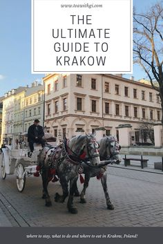 Here are my tips for visiting Krakow, including where to stay, what to do and the best places to eat in Krakow, Poland. Visit Krakow, Krakow Poland, Best Places To Eat, Travel Guides, The Good Place, Street View, Europe, Day