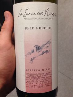 A good wine is always a good choice.#barbera #red #wine