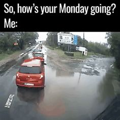 Bad case of the mondays  funny pics, funny gifs, funny videos, funny memes, funny jokes. LOL Pics app is for iOS, Android, iPhone, iPod, iPad, Tablet