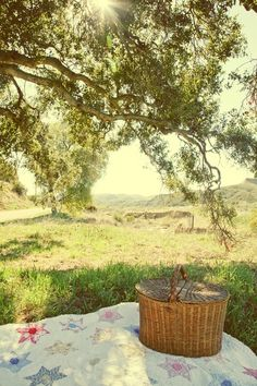 Johnnie and I set out the picnic basket and quilt in the quietness of the meadow, where only song birds could be heard singing.