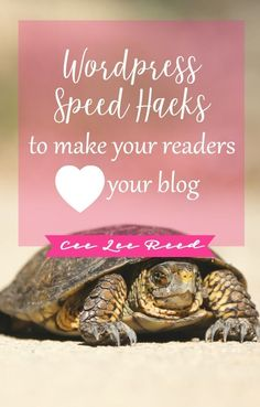 Wordpress speed hacks so readers will love your blog on CeeLeeReed.com