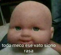 Imagenes para comentar en facebook Memes graciosos #Memes #MemesFacebook #MemesTwitter todo meco ese vato sono rasa