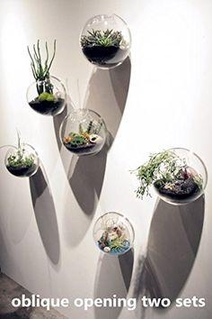 Amazon.com: NewDreamWorld's set of 3 Mixed Sizes Bubble Terrariums, Indoor Wall Glass Vase, Fish Tank, Wall Moss Terrariums, Succulent Planter, Wall Air Plant Holder: Patio, Lawn & Garden