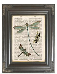 BOGO SALE Vintage insect print Teal dragonfly by bmarinacci, $9.75