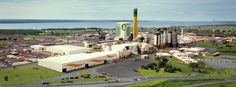 A Geradora-Poliservice presente na inauguração da maior fábrica de celulose do mundo (clique na imagem para mais informações)