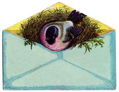 Click on Image to Enlarge This is another Bird in Envelope Advertising card. I just adore the colors on this one! The Aqua Envelope combined with the Pink Bird is just so special. You may recall a similar one that I posted HERE. These are so great for Collage but I think the blank version...Read More »