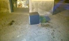 Panico in piazza del comune a Tuoro, arrestati