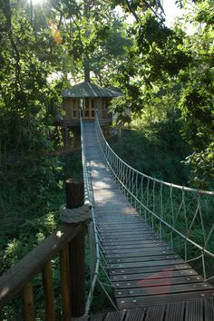 Tree House Studio | Flickr - Photo Sharing!