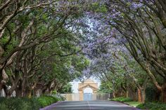 Johannesburg Zoo entrance gate