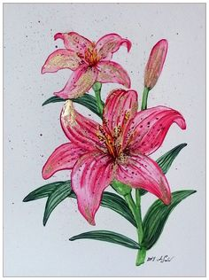 Lily Wallpaper, Fabric Paint Designs, Paint Effects, Rooster, Dragon, Plants, Pictures, Painting, Animals